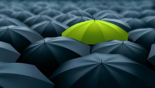 One Green Umbrellas