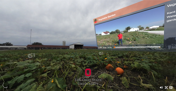 Screencap of 360-degree virtual field trip to a farm site where pumpkins grow on the ground. An inset window shows a video of a professor talking about the plants found at the site.