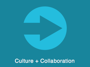Culture and Collaboration Stories